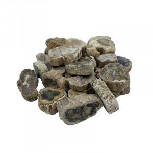 Bois fossile scié et poli - Madagascar- Sachet 1 kg