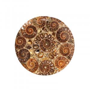 Plateau en ammonites de Madagascar